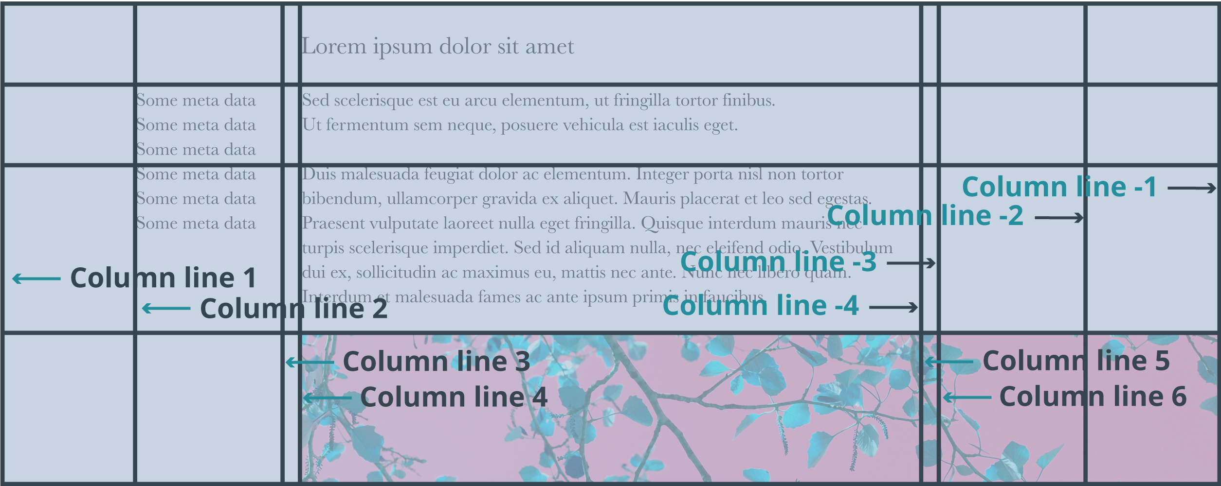 Css grid layout column lines